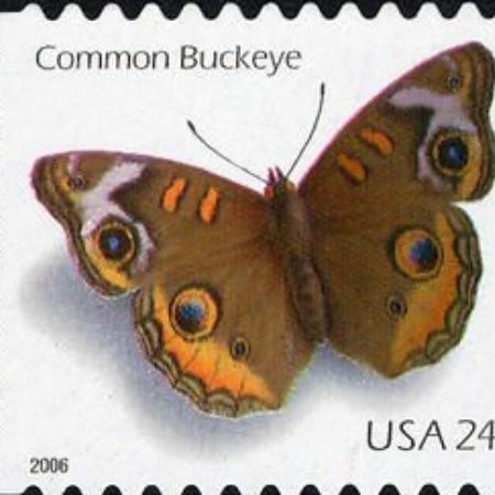 a butterfly stamp